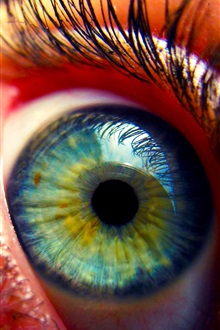 Eye close-up, Wimpern iPhone Hintergrundbilder Vorschau