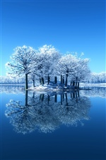 Blue Winter, Schnee, Bäume, Mirror Lake, Reflexion iPhone Hintergrundbilder