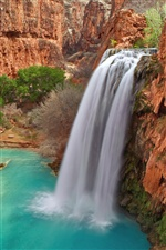 Havasu Falls, Grand Canyon National Park in Arizona iPhone Hintergrundbilder