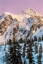 Nordamerika, Washington, Mount Shuksan, Schnee, Winter, Bäume iPhone Hintergrundbilder