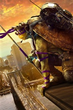 2016 Film, Teenage Mutant Ninja Turtles 2 iPhone Hintergrundbilder