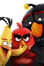 Angry Birds Film 2016 iPhone Hintergrundbilder